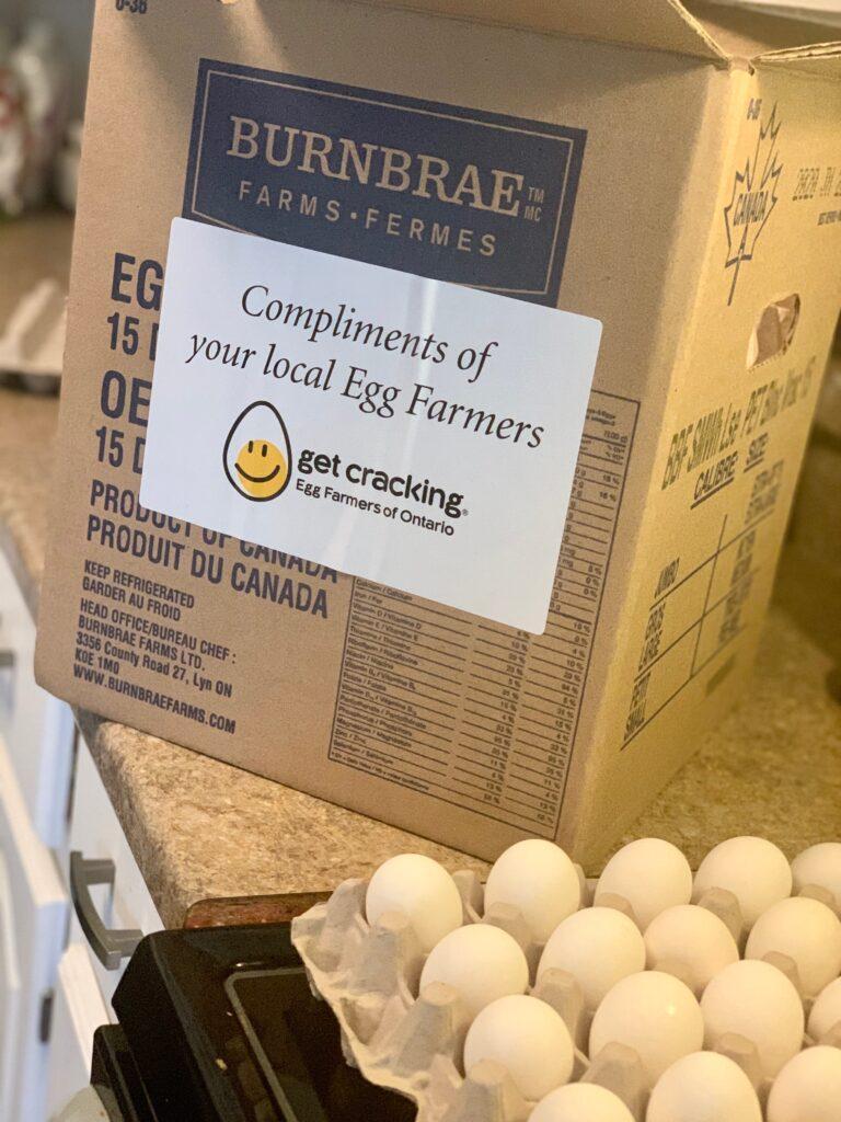Egg Outreach